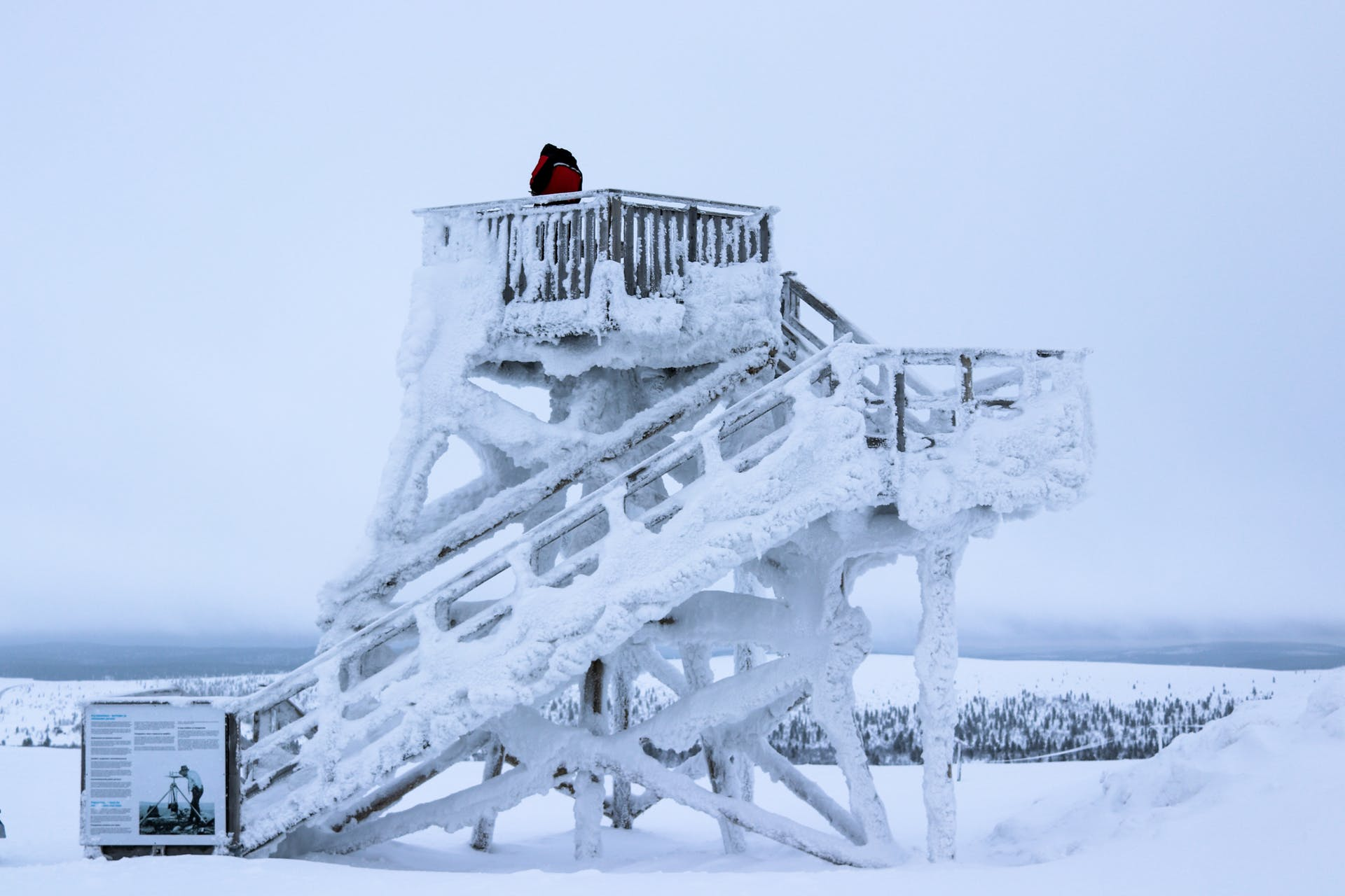 finland lapland snow cold frozen winter