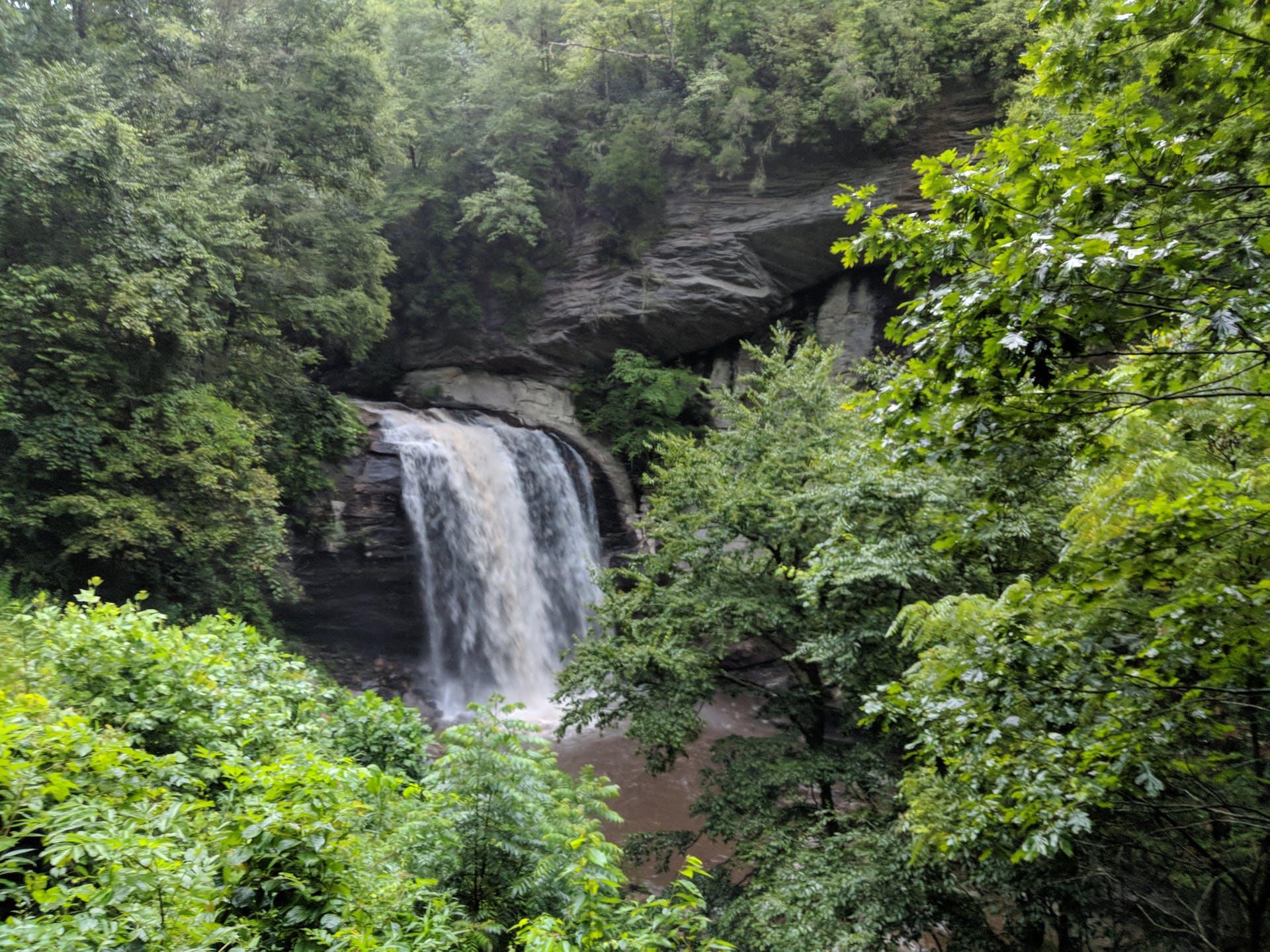 rock waterfall dark green plants forest nature mountain