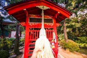 architect videography sun water naim.tokyo park naim benjelloun nature japan filmmaker