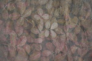 art background texture grunge backdrop wall surface vintage close-up design