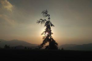 backpacker environment #outdoorchallenge sunrise mountains chill calm evening sun chile fir
