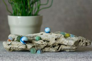 beach finds beach marbles