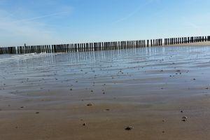 beach sea sand-beach