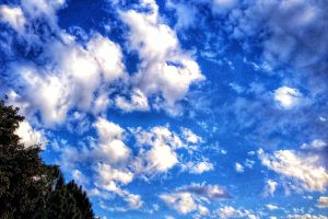 blue skies about time cloudscape evening trees