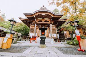 buddha tooth relic temple tree architect japan tokyo park naim.tokyo filmmaker naim benjelloun water