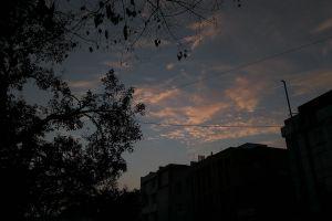 cloudy sky tree evening sky dusky clear sky blue sky night sky mobile photography