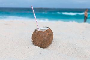 coconut water close-up coastline coconut delicious waves coast fruit straw fresh fruit