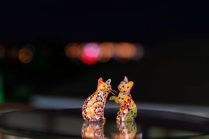 dark background night bokeh collectables mosaic cats glass table reflections pretty cats cats in colour colourful felines