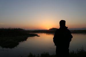 dawn dawn dusk nature