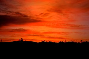 dawn desert orange sky