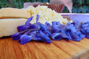 delicious close-up view product close-up slice table cheese dairy product food photography eating healthy good health