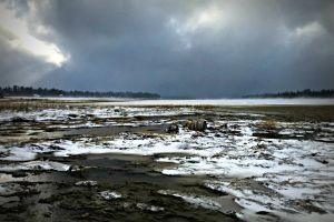desolate polution cold winter environment