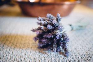 dried flowers lavander flowers