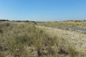 dunes road sea