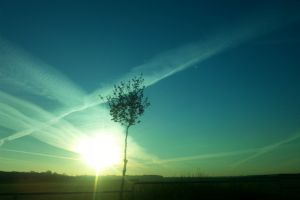 evening sun sky sun