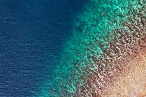 from above aerial shot drone shot bird's eye view ocean sea water indonesia