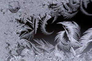 frost cold macro nature ice winter