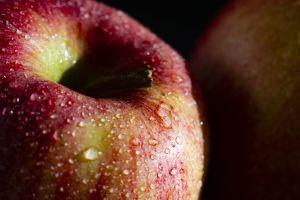 fruit fresh fruits apple fresh fruit apples fruits
