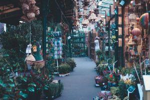gardening paris street