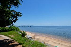 grass queensland ocean walkway plants paved pathway ocean clear sky beach blue sky trees