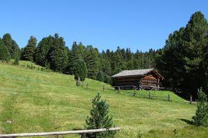 hut grass sky mountain summit pasture tree tour tourism panorama cabin austrian