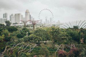 landmark cityscape park city buildings trees urban
