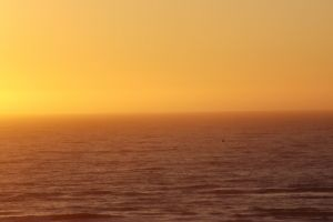 landscape beach waves sunset golden sun sea sunny