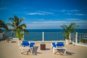 leisure hotel water daylight coconut trees sea palm trees relaxation loungers beach chairs