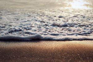 love waves beach
