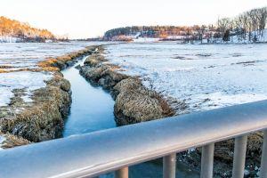 marsh massachusetts new england snow salt ocean landscape