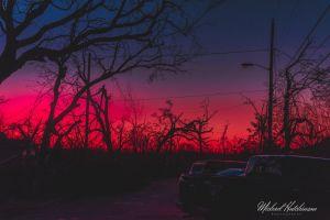 moon dark sunrise sunset purple red trees black nature colorful