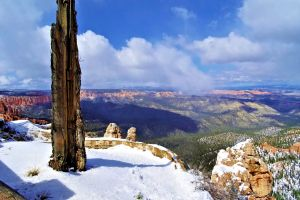 national-park snow bryce idyllic tourism tourist attraction usa sandstone canyon erosion