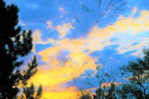 nature night dawn sunset