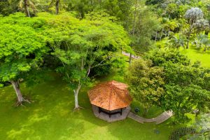 nature scenic park drone view growth bird's eye view gazebo colors grass roads