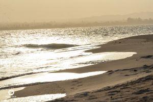 nature sunset beach adventure sunset ocean