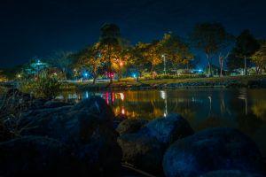 night night photograph city park long exposure