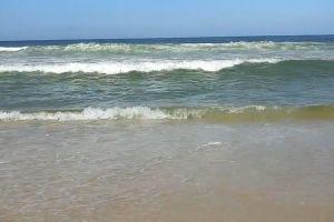 ocean beach shore