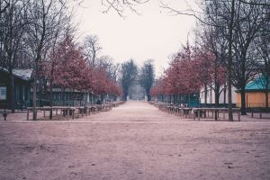 paris france garden