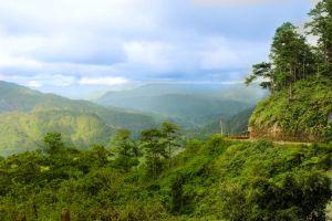 province landscape green