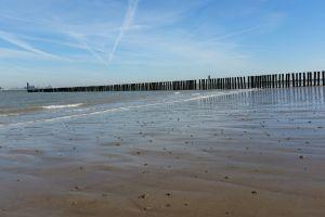 sand-beach sea beach