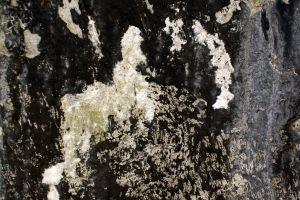 scratch texture dirty concrete dark black background wall destroyed grunge