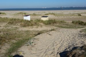sea sand-beach sand