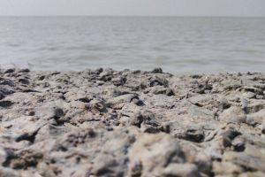 sea scape beach bitch