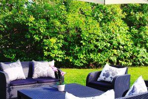 seating area parasol garden green garden garden furniture