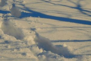 shadow tracks frosty frost footprints prints winter cold snow covered snow