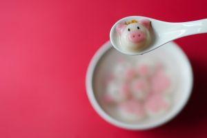 tangyuan color food tang yuan still life pig spoon porcelain cute delicious