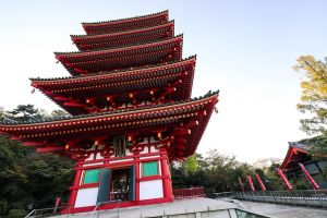 temple photography sun architect green naim.tokyo naim benjelloun filmmaker japan videography