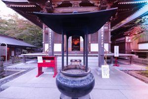 tree architect japan temple nature sun filmmaker drone footage sky tokyo