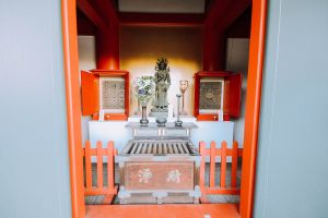 tree architect trt digital filmmaker buddha tooth relic temple water nature photography naim benjelloun sun