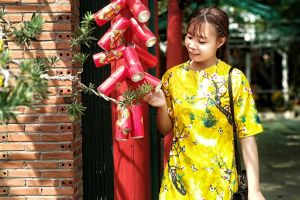 vietnam girl happy holidays color vietnam festival new year happy new year beautiful lunar new year